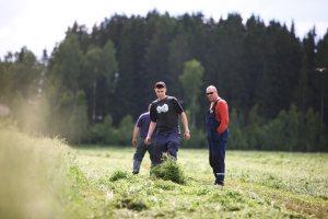 Biokaasun tuottamisen kannattavuuteen vaikuttaa myös mahdollisuus tehdä yhteistyötä muiden viljelijöiden kanssa. Kuva: Janne Lehtinen / Luken arkisto.