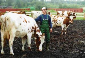 kuva: Esa Melametsä/MTT:n arkisto
