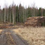 kuva: Jos Helmich/Luonnonvarakeskuksen arkisto