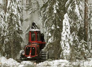 Jatkuvapeitteinen metsänkasvatus edellyttää toistuvia hakkuita ja aktiivisuutta metsänomistajalta. Kuva: Markku Saarinen.