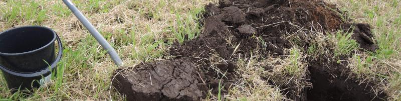 kuva, jossa kuoppa pellossa ja lapio ja ämpäri